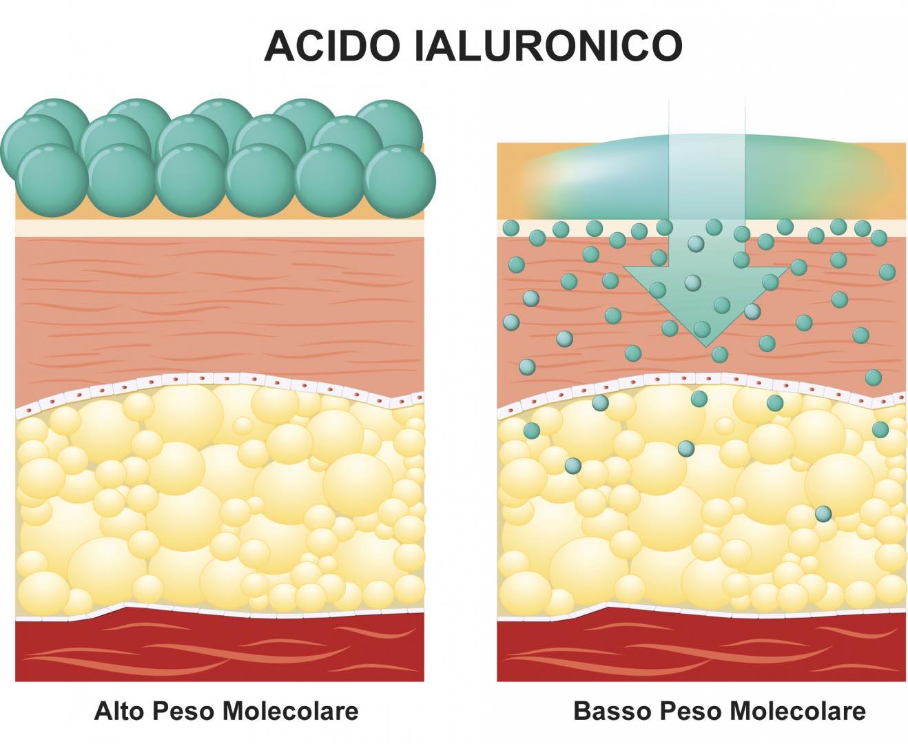 Acido Ialuronico Penetrazione