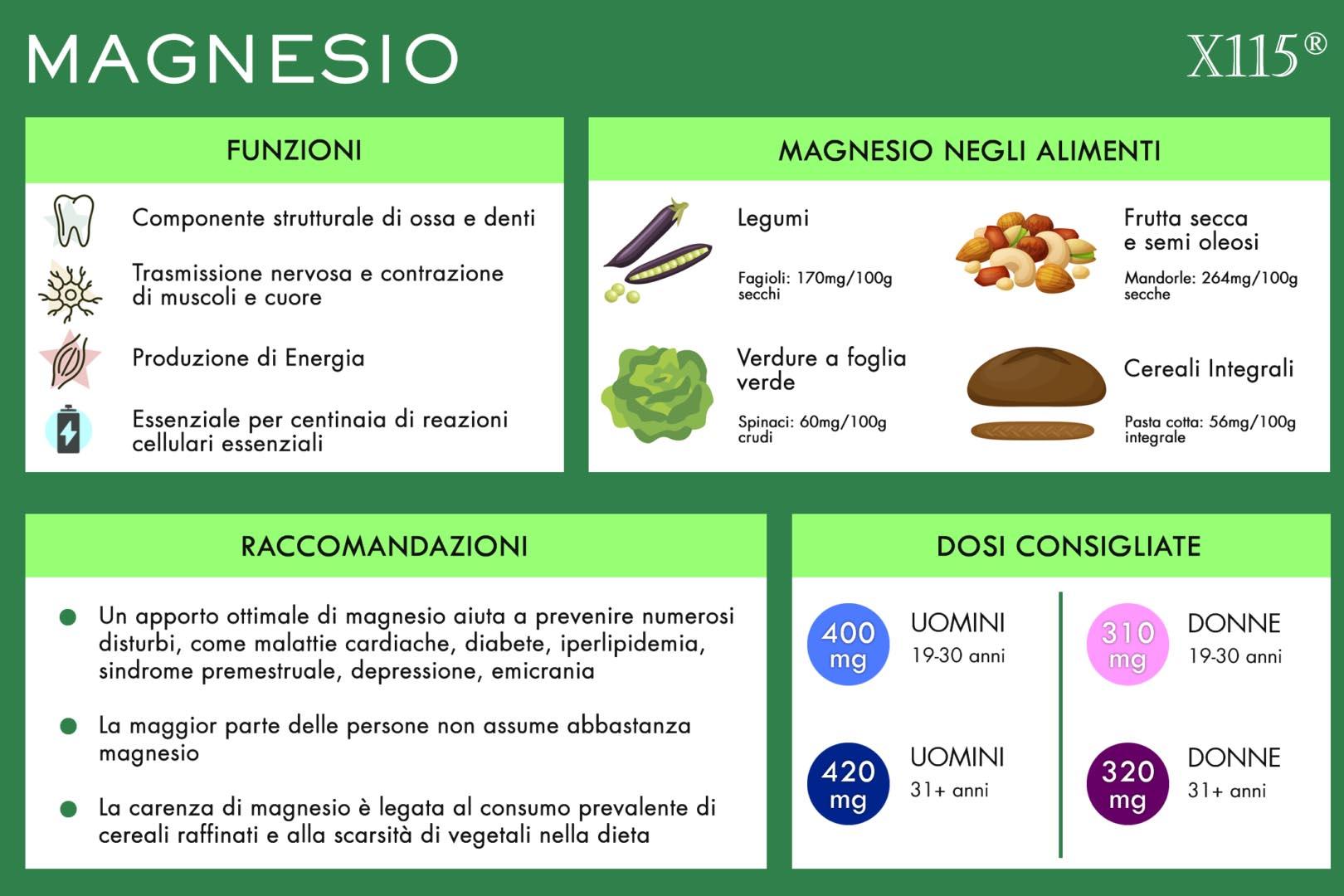 Magnesio Infografica