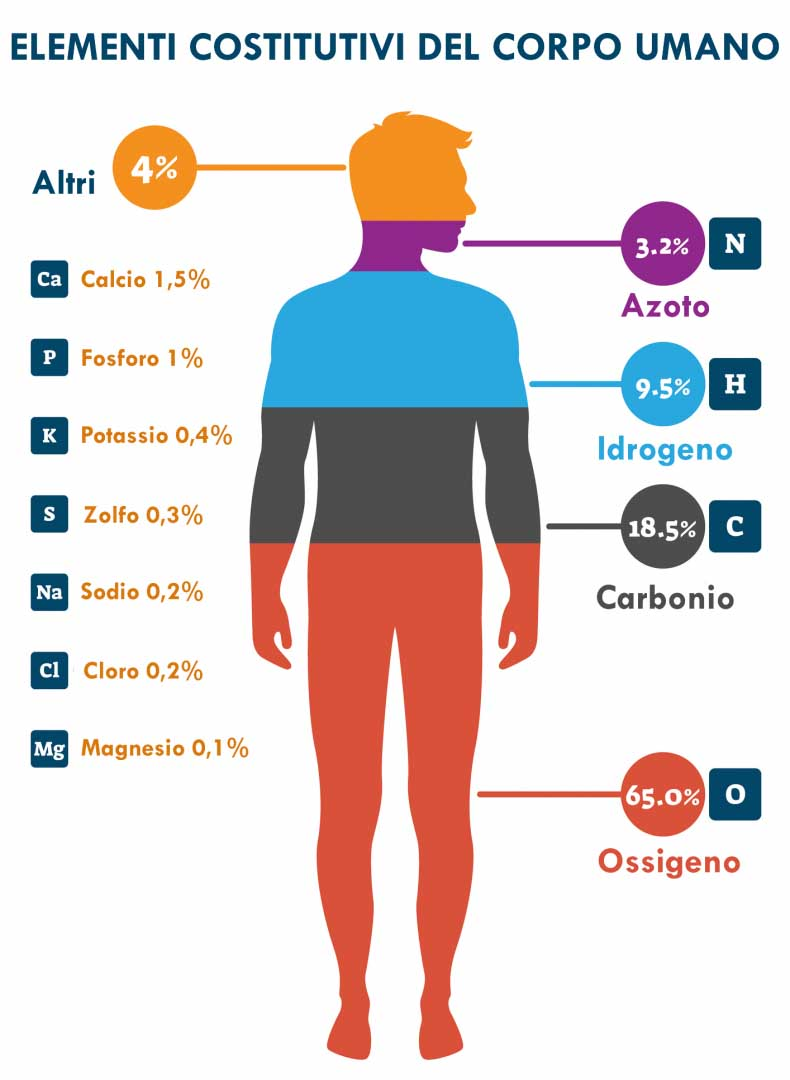 minerali corpo umano